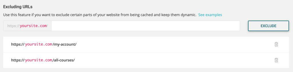 SG Optimizer excluding URLs setting